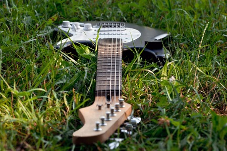 Dropped Guitar in Grass